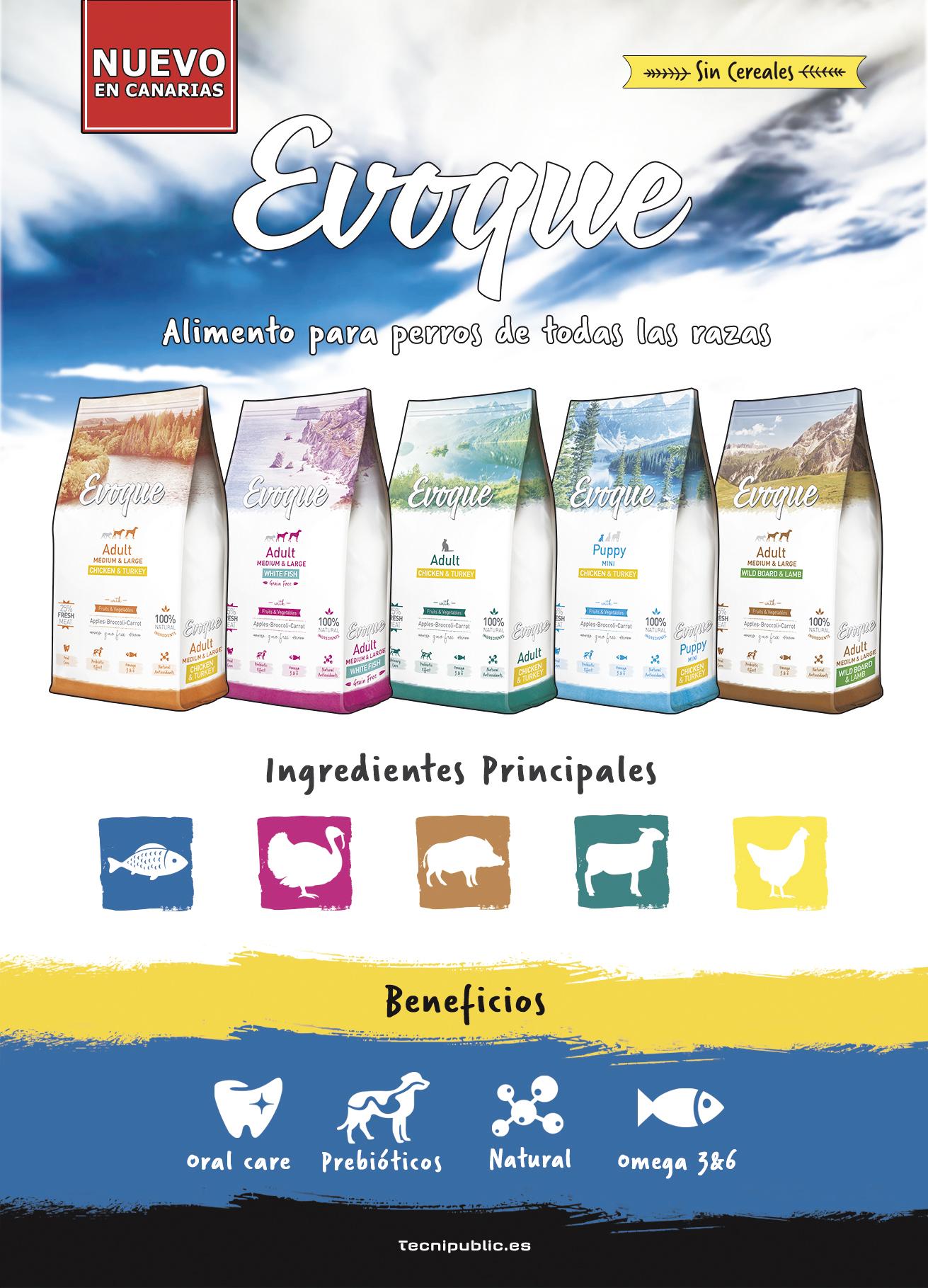Publicidad Evoque - 2017