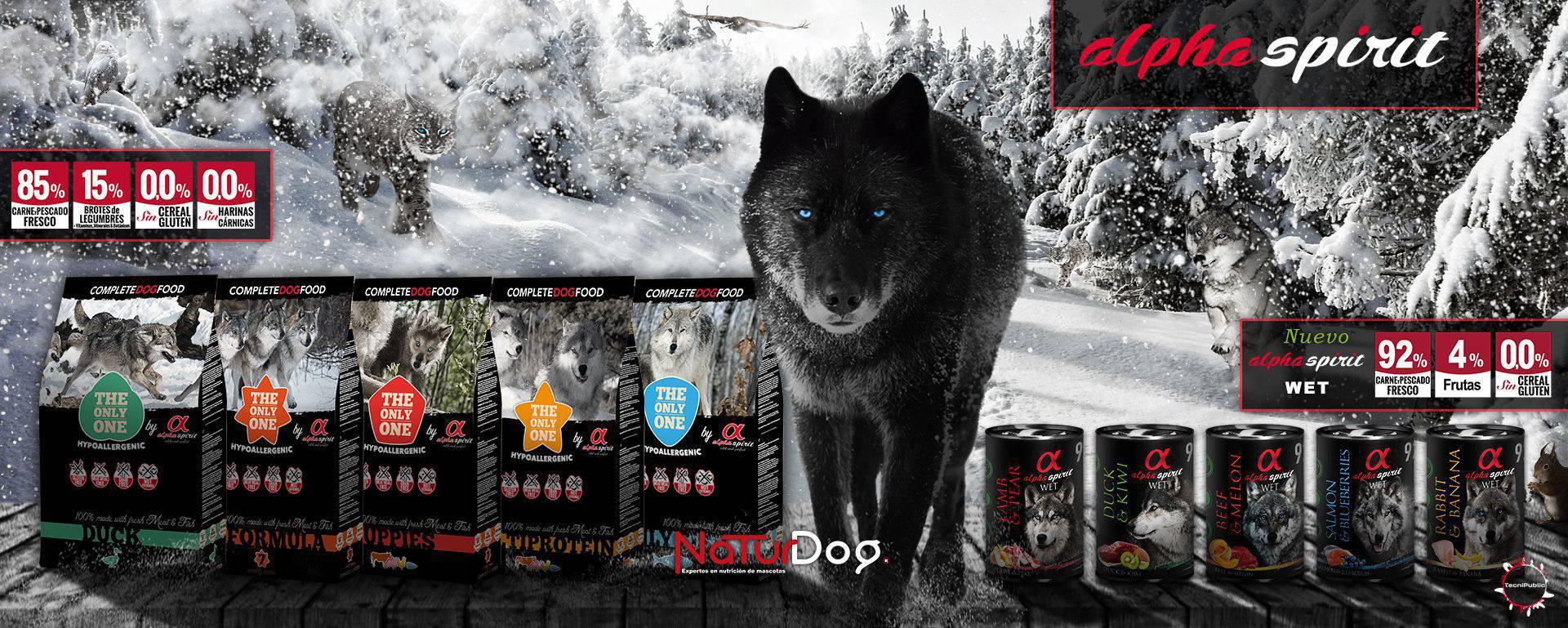 Alpha Spirit slide designed by TecniPublic.es