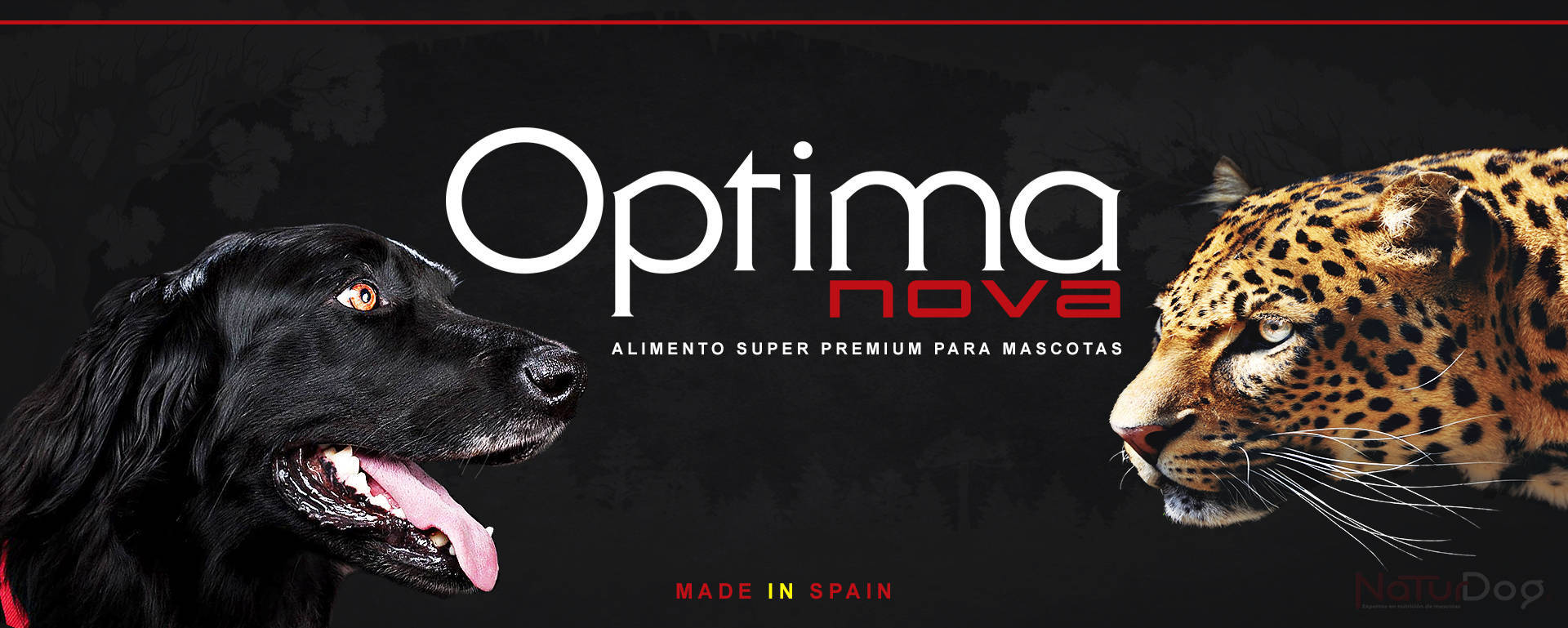 Optima nova Cocker Leopardo NaturDog web by TecniPublic.es
