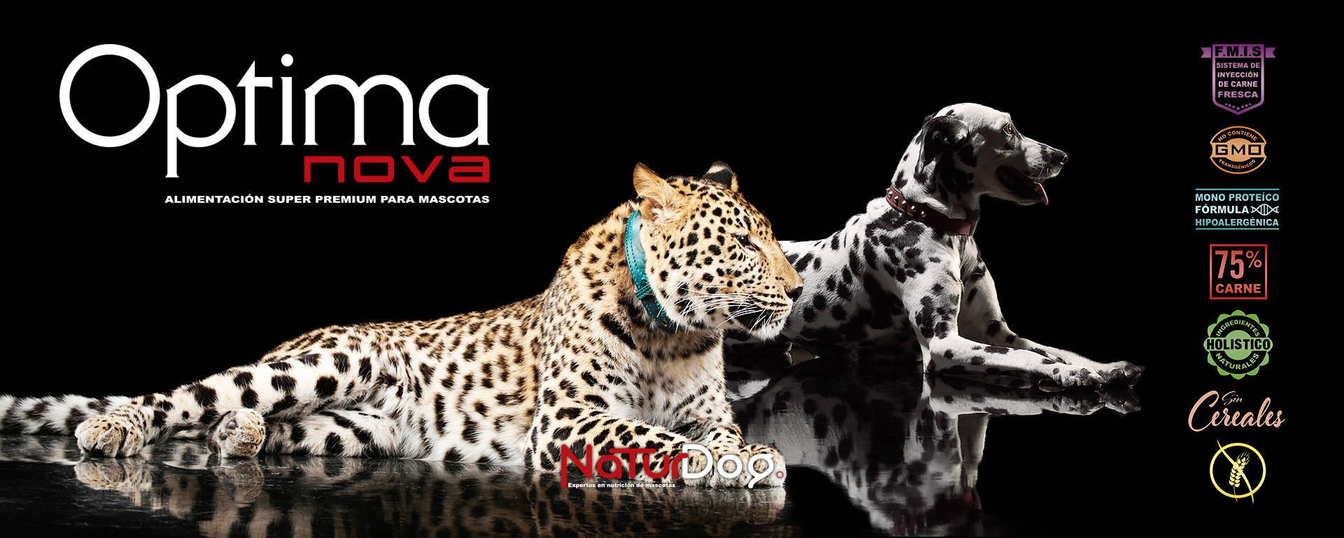 Optima nova Dalmata Leopardo NaturDog web by TecniPublic.es