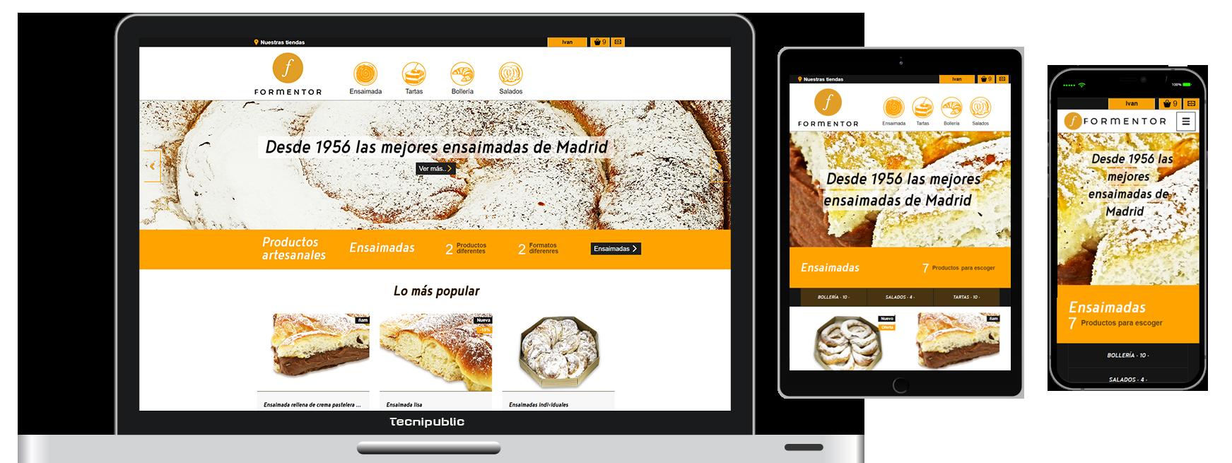 Web diseño fluido para Formentor - 2017