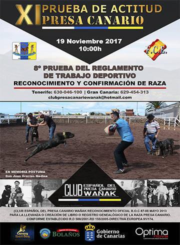 Cartel para el Club Presa Canario Wañak 2017