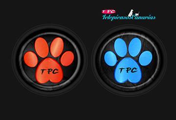 Logo social TelepiensosCanarias - 2015